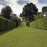 Kakovostno in učinkovito akumulatorske škarje za živo mejo za odličen videz vrta